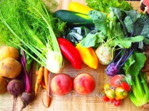 旬の野菜は栄養価が高い